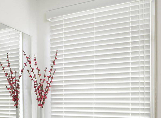 Roller Blinds And Louvres